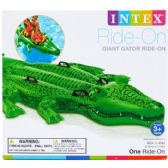 "6 Units of 80""X45"" GIANT GATOR RIDE-ON W/ HANDLES IN COLOR BOX - Summer Toys"