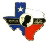 96 Units of Brass hat pin, Texas / POW - Hat Pins / Jacket Pins