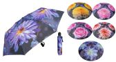 "6 Units of 43"" Auto-Open/Close Mini Umbrellas - Assorted Floral Prints - Umbrella"