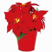 40 Units of Xmas Decoration Flower Led Light Poinsettia - Christmas Decorations