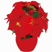 20 Units of Xmas Decoration Flower Led Light Poinsettia - Christmas Decorations