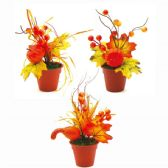 96 Units of Thanksgiving Potted Plant - Halloween & Thanksgiving