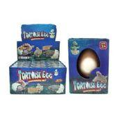 48 Units of TURTLE GROW HATCHING EGG - Magic & Joke Toys