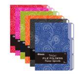 48 Units of BAZIC 1/3 Cut Letter Size Paisley File Folder (3/Pack) - Folders & Portfolios