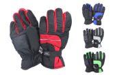 24 Units of Mens Nylon Ski Gloves - Ski Gloves