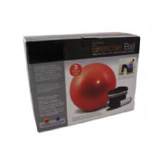6 Units of Exercise ball with pump - Workout Stuff