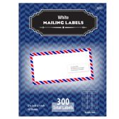 """24 Units of 1"""" X 2 5/8"""" White Address Labels (300/Pack) - Labels ,Cards and Index Cards"""