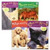 24 Units of ANIMAL ACTIVITY HARD COVER BOOK 4 ASSORTMENTS - Puzzle Books