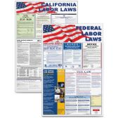 Advantus Federal and State Labor Law Poster - Poster