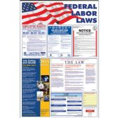 Advantus Federal Labor Law Poster - Poster