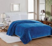 12 Units of QUEEN SIZE MICRO PLUSH BLANKET - Micro Plush Blankets